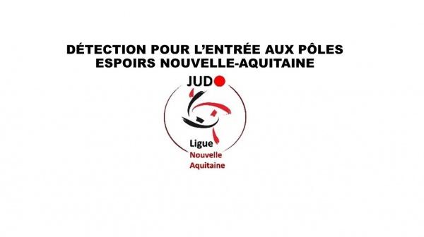 DETECTION POUR L'ENTRÉE AUX POLES ESPOIRS